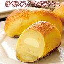 スイートポテト さつまいも「ほくほくスイートポテトミニ 6個入」 北海道 スイーツ 北のさつま芋