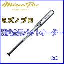 ミズノプロ(mizuno pro) 硬式用金属製バットオーダー (Power) 2TH-29100 専用バットケース付き【野球用品/送料無料】