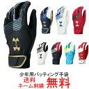 【ネーム刺繍無料】アンダーアーマー 少年用バッティング手袋 ...