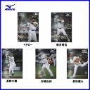 ミズノ(mizuno) ポスター 1GJX830001 B2サイズ(515×728ミリ)【メール便不可/野球用品】