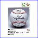ミズノ(mizuno) 硬式用試合球 高校試合球 1BJBH10100 1ダース価格 【送料無料】