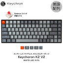 Keychron K2 V2 Mac英語配列 有線 / Bluetooth 5.1 ワイヤレス 両対応 テンキーレス Gateron 赤軸 84キー WHITE LEDライト メカニカルキーボード # K2/V2-84-WHT-Red-US キークロン (Bluetoothキーボード)