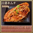 約50人前!株 白菜キムチ 5000g【超メガモリ】【あす楽】【キムチのキテンカ】