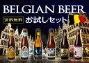 ベルギービールセット 詰め合わせ 6本入り 送料無料 お中元