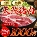天然初物 いのしし肉 猪 【特選上100g】 新商品! ボタ...