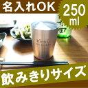 真空断熱タンブラー 名入れ 洋食器 グラス・タンブラー 250ml 送料無料 急ぎ 【楽ギフ_名入れ】