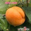 ご予約受付中 長野県産 生食用 あんず 品種おまかせ 約2キロ