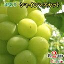 最安値 訳あり 完熟 ぶどう シャインマスカット 長野県産 産地直送 2キロ