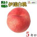 【ご予約受付中】 訳あり 味極み 完熟 伊達白桃(桃) 減農薬 長野県産 5キロ