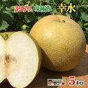 ご予約受付中 家庭用 完熟 梨 幸水 減農薬 長野県産 鮮度抜群 約5キロ