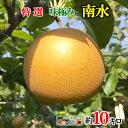 9月下旬発送 特選 南水 梨 減農薬 完熟 長野県産 10キロ