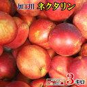7月下旬発送 加工用 ネクタリン 減農薬 長野県産 3キロ レビューを書いたら200円クーポン