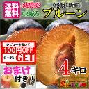 メーカーだからできる 最安値 完熟 生 プルーン 減農薬 長野県産 朝獲れ 鮮度抜群 4キロ