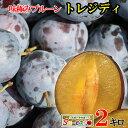 7月下旬 朝どれ生プルーン トレジティ 長野県産 2キロ レビューを書いたら200円クーポン