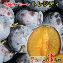7月下旬発送 朝どれ生プルーン トレジディ 長野県産 3キロ レビューを書いたら200円クーポン