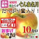 10月下旬 ぐんま名月 りんご 訳あり 減農薬 10キロ...