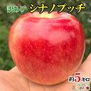 ご予約受付中 訳あり 葉とらず 味極み りんご シナノ