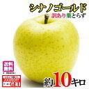 【送料無料】 訳あり 葉とらず味極みりんご シナノゴールド ...