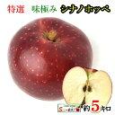 10月下旬 朝どれ シナノホッペ 特選 りんご 減農薬 長野県産 5キロ おまけ付き レビューを書いたら200円クーポン