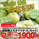 鳥取産 二十世紀梨 大玉 2kg 秀品以上の贈答用 100年以上愛され続けた青梨 送料無料 複数個購入でおまけ付き 20世紀梨 廿世紀梨
