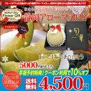 送料無料 母の日ギフト 静岡県産メロックスアローママスクメロン1玉入り プレゼント用ギフトボックス入り