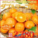 【送料無料】みかんとオレンジいいとこどり!絶対おすすめ「ダブルマーコット」2.5kg