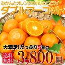 【送料無料】みかんとオレンジいいとこどり!絶対おすすめ「ダブルマーコット」5kg