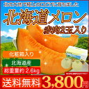 北海道 メロン 赤果肉 2玉入り 1玉1.3kg以上 送料無...