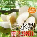 お中元 ギフト 送料無料福岡産 幸水梨2.6kg 暑いこの時期にぴったりの果汁を...