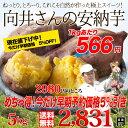今だけ早割タイムセール◆【送料無料】鹿児島県種子島産 濃厚な味わいの『安納芋』(訳あり・無選別)うれしい5kg