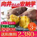 送料無料 種子島 安納芋 訳あり 無選別 3kg さつまいも 焼き芋 はもちろん干し芋にも