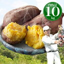 安納芋 種子島産 送料無料 訳あり 無選別 10kg さつまいも サツマイモ 焼き芋 はもち