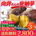 安納芋 種子島産 送料無料 訳あり 無選別 3kg さつまい...