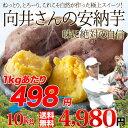 送料無料 鹿児島県種子島産さつまいも 濃厚な味わいの安納芋(蜜芋)訳あり・無選別10kg 焼き芋はもちろん干し芋にも! あんのういも・あんのんいも