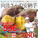送料無料 鹿児島県種子島産さつまいも 濃厚な味わいの安納芋(蜜芋)訳あり・無選別5kg 焼き芋はもちろん干し芋にも! あんのういも・あんのんいも