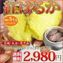 店長激オシ送料無料!!紅あずまの味をはるかに超えたおいしさ「紅はるか」5kg