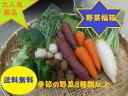 【送料無料】季節の野菜『千葉野菜福箱』季節の旬の野菜がたっぷ...