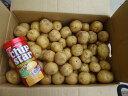 【送料無料】千葉県産じゃが芋小サイズ5kg ※沖縄地区は除く