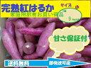 ★完熟品★ 紅はるか サツマイモ 家庭用 小サイズ8kgさつま芋 さつまいも 【送料無料】