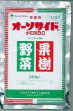 (配送区分A)オーソサイド水和剤80 250g