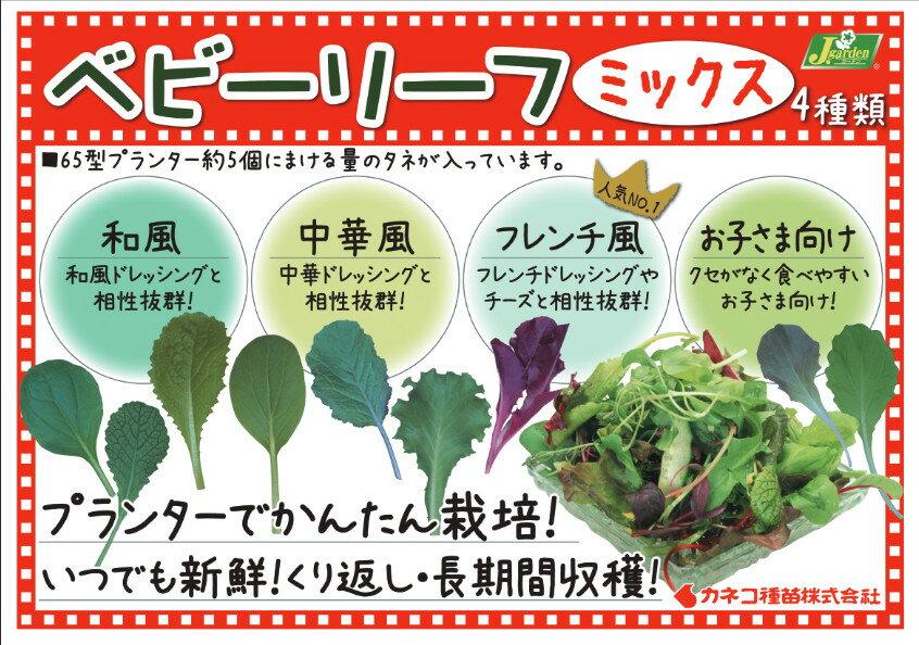 【J.ガーデン】ベビーリーフ 12種類からのア...の紹介画像2