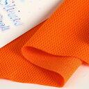 冷感 UV 抗菌 消臭 吸汗速乾 シャインクール40 リバーシブルメッシュ オレンジピール 犬服 生地 ニット生地