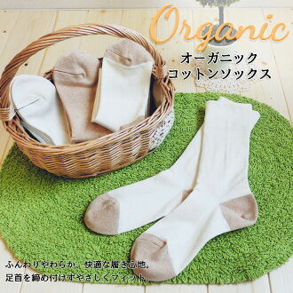 Organic cotton socks / Lady's