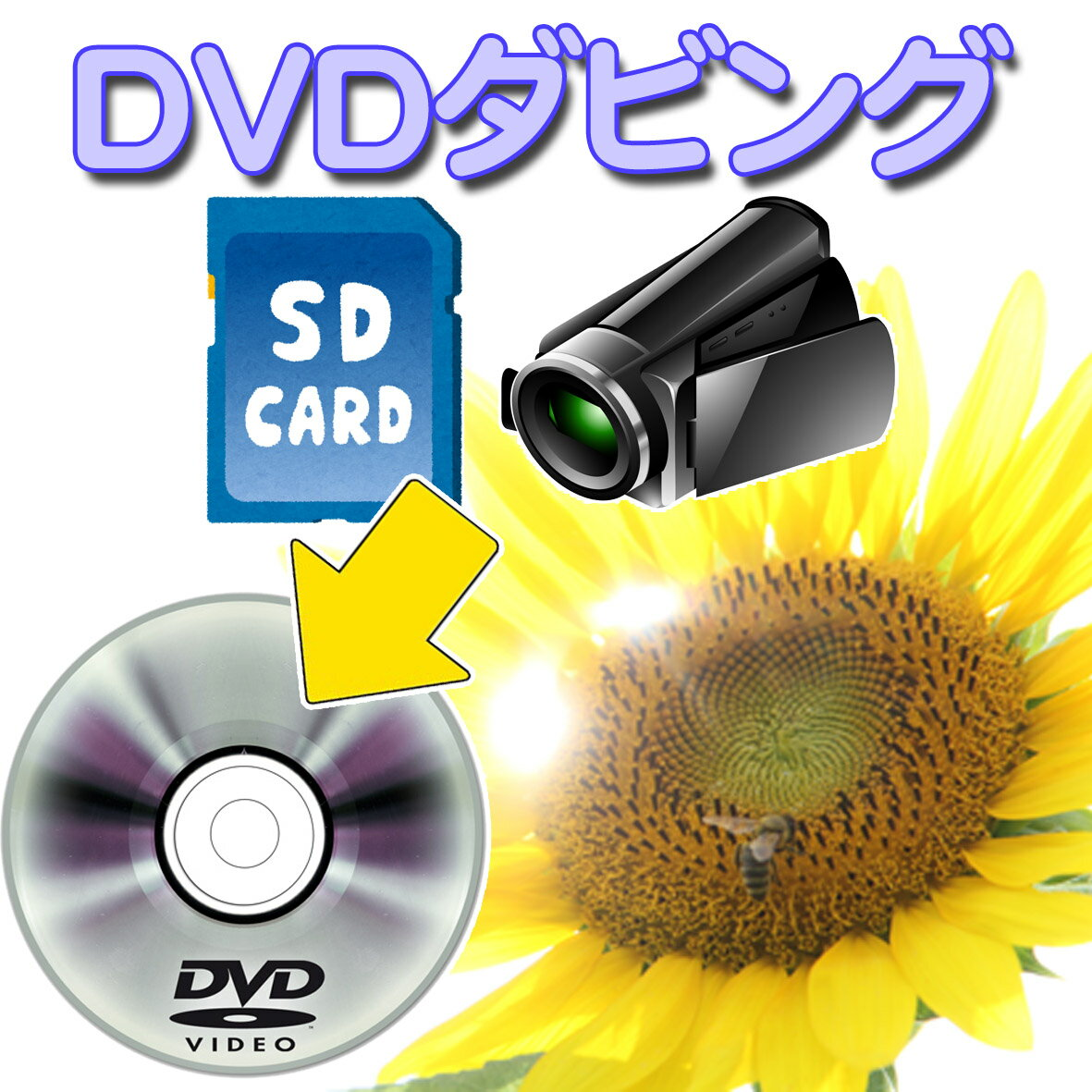 ビデオカメラ SDカードなど各種デジタルメディアから DVD に ダビング ( dvd ダ…...:ko-e-1972:10000332
