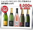 【送料無料】シャンパン・カバ・スパークリング泡5本セット!!