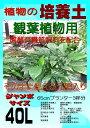 植物の培養土 観葉植物用(有機質肥料入り)ジャンボサイズ 40L