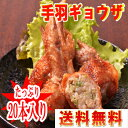 ■【送料無料】★特別大特価!手羽ギョウザ(20本入り)■(冷凍)