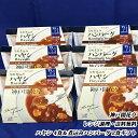 【ポイント5倍】【お歳暮好適品 送料無料】ハヤシ4食