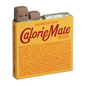大塚製薬 カロリーメイト ブロック 4本×10個