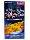 井藤漢方製薬株式会社ブルーベリーテインプラス 60球×6個セット【RCP】